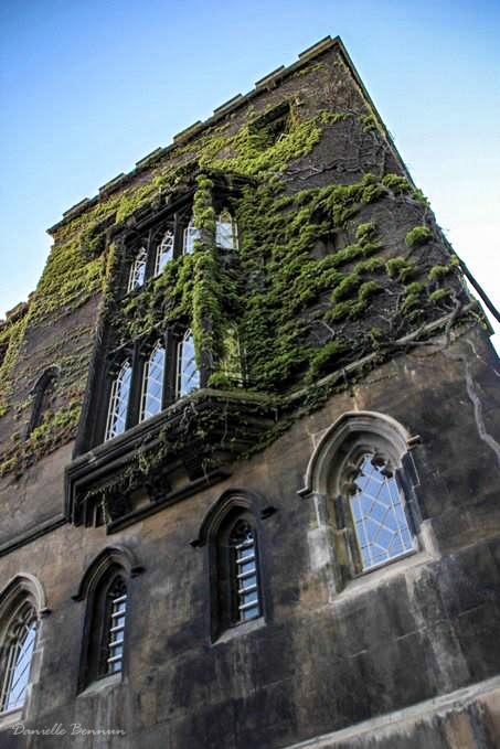 אוניברסיטה לדוגמא: קיימברידג'
